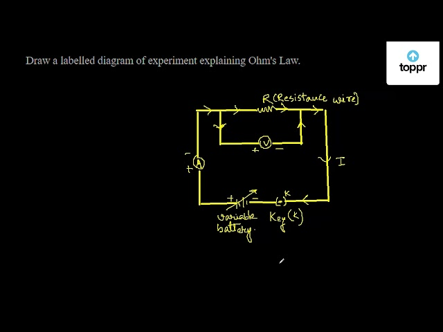 Draw A Labelled Diagram Of Experiment Explaining Ohm S Law